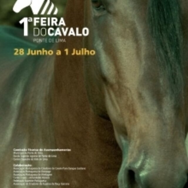 I cartaz video 2 1 640 640